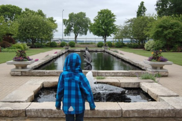 Watching the fountains