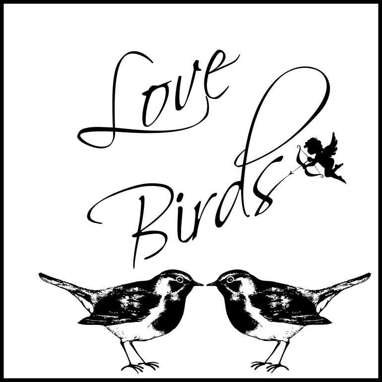 lovebirds-square