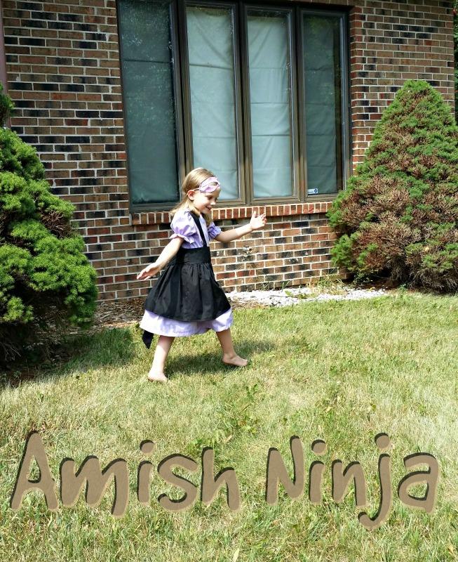amish ninja