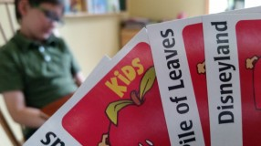 Apples to Apples fun!